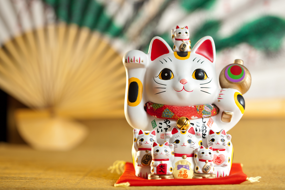 Lucky cats are lucky
